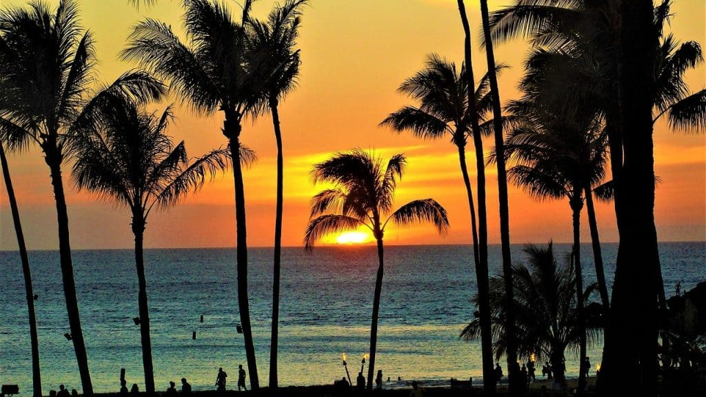 Is a passport needed to go to Hawaii from the US