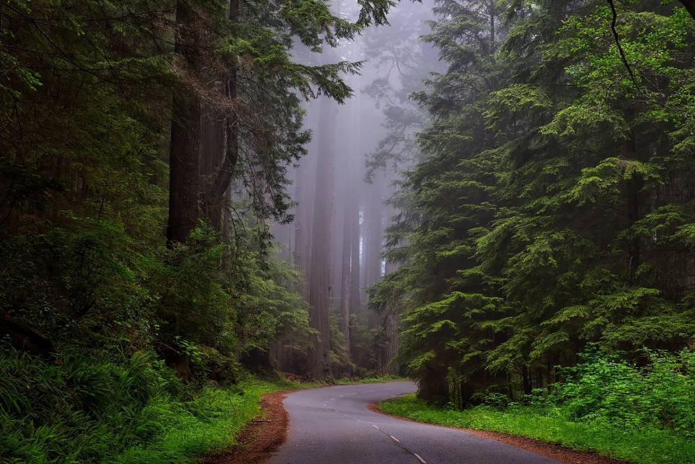 Ways to Save on National Park Fees