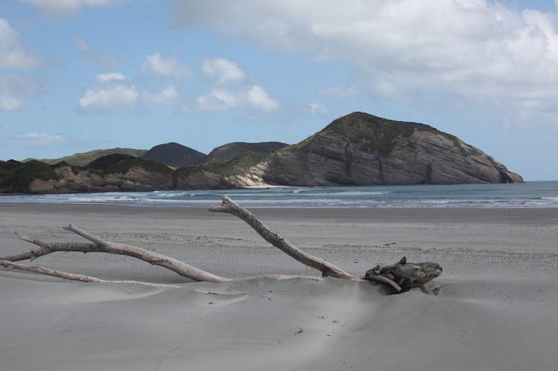 Wharariki Beach - Things to Do in South Island of New Zealand