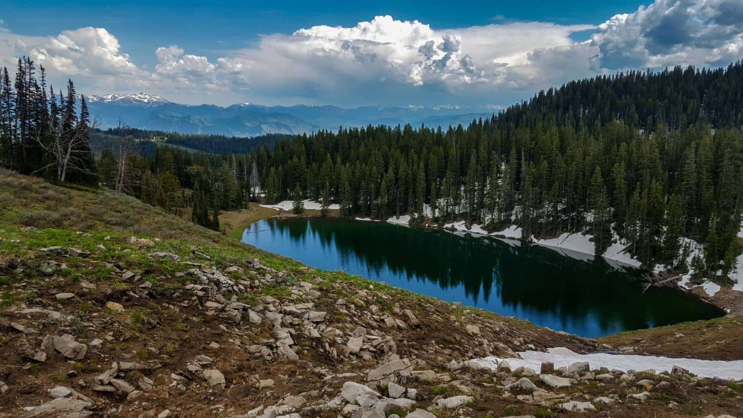 Free Things to Do in Jackson Hole