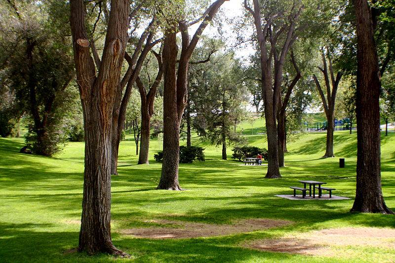 Albuquerque Roosevelt Park - Free Things to Do in Albuquerque, New Mexico