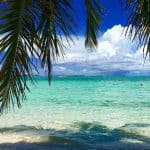 Visit Bimini Bahamas—The Little Treasure Island off the Coast of Florida