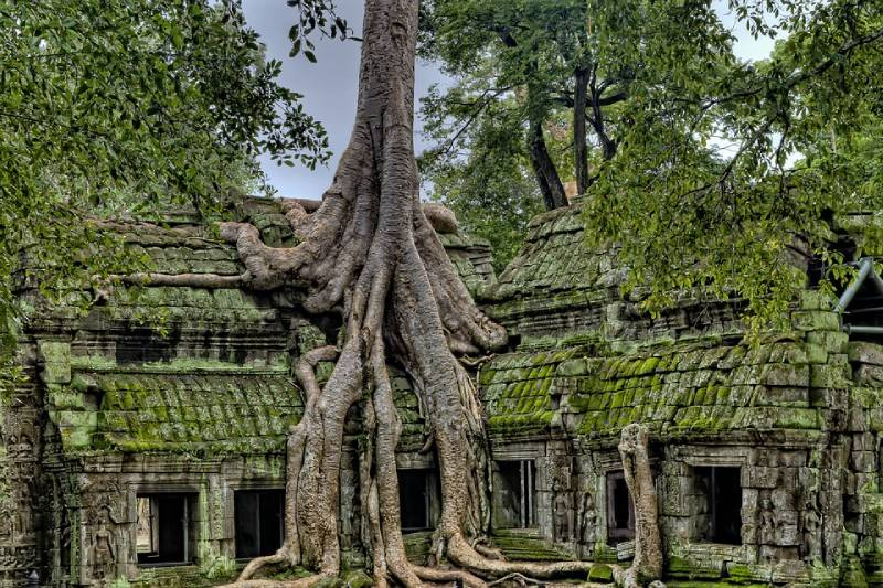 Angkor, Cambodia - Best Places to Visit in Southeast Asia