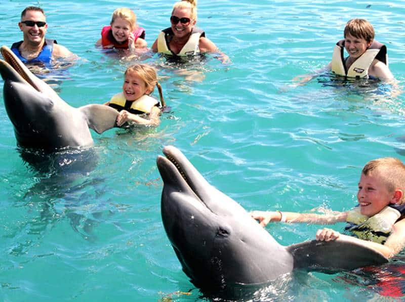 Dolphin Encounters, Bahamas with Kids