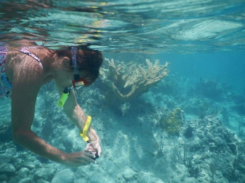 Snorkeling - Cayman Islands with Family