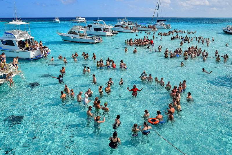 Swimming with Sting Rays in Cayman Islands