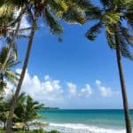 10 Best Things You Should Do in Martinique