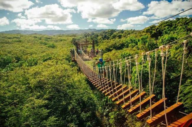 CLIMB Works Keana Farms - Things to Do in Oahu, Hawai