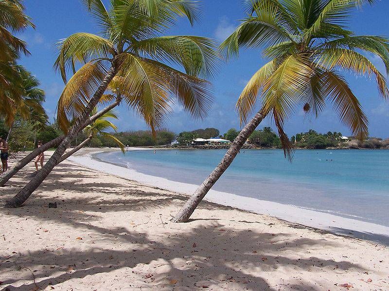Plage des Salines Beach - Best Things You Should Do in Martinique