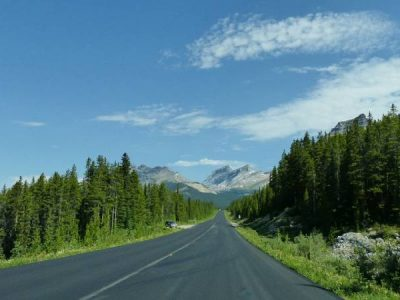 Amazing Stops and Things to Do on Canadian Icefields Parkway