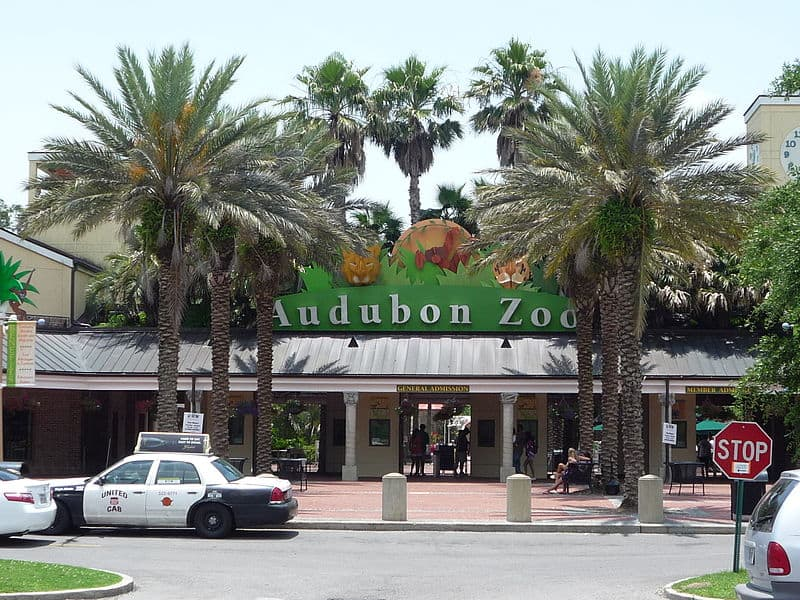 Audubon Zoo - Budget Spring Break Destinations