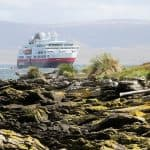 How to Visit Isolated Falkland Islands with Kids