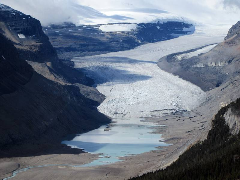 Parker Ridge - Canadian Icefields Parkway