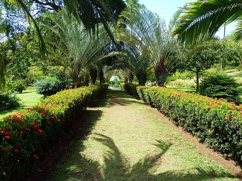 St Vincent and the Grenadines Botanical Garden