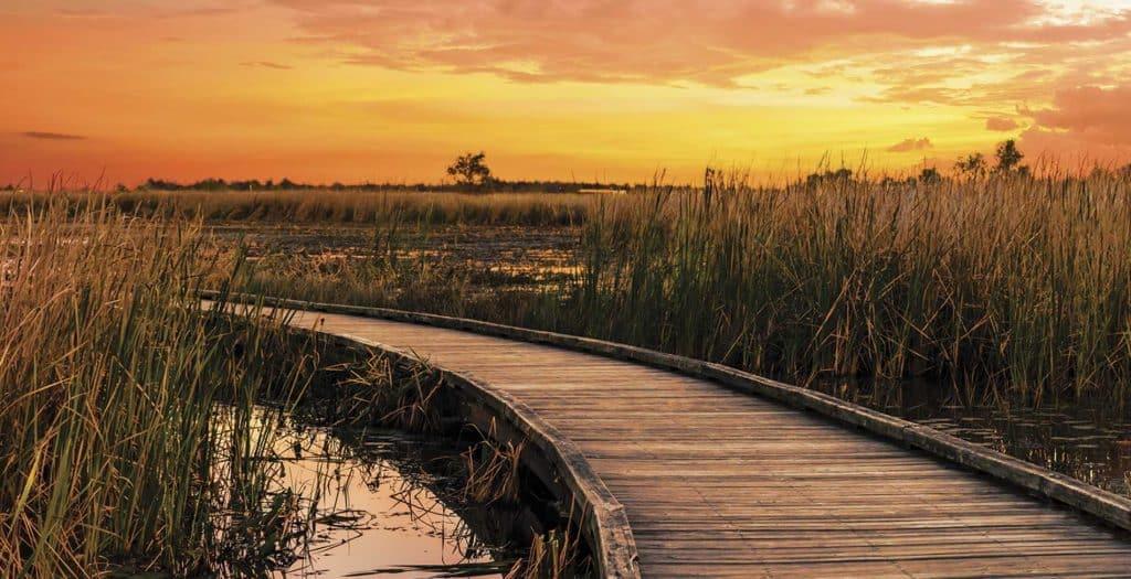 Creole Natural Trail, Lake Charles, Louisiana