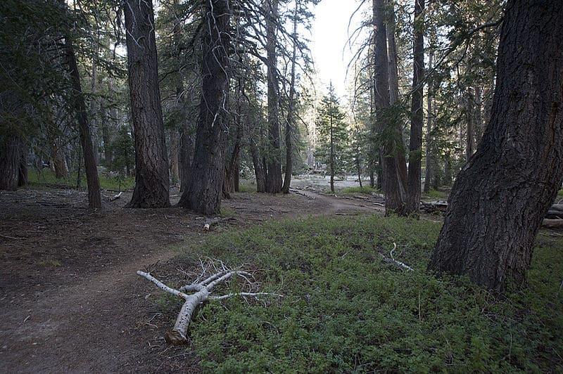San Jacinto Trail