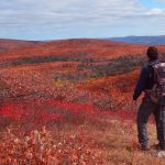 30 Fun Things to Do in Upstate New York