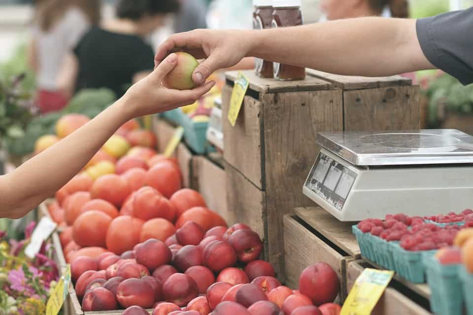 Farmer's Market - Things to Do in Charleston, South Carolina