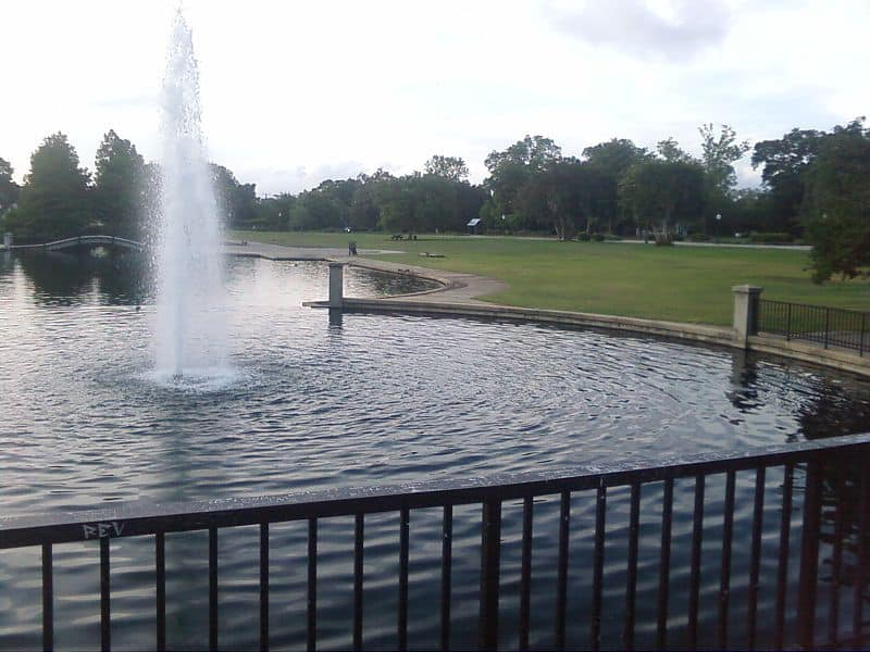 Hampton Park - Things to Do in Charleston, South Carolina