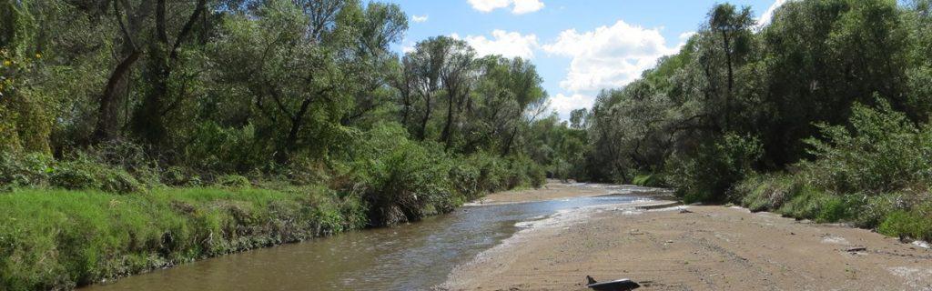 Santa Cruz River Park