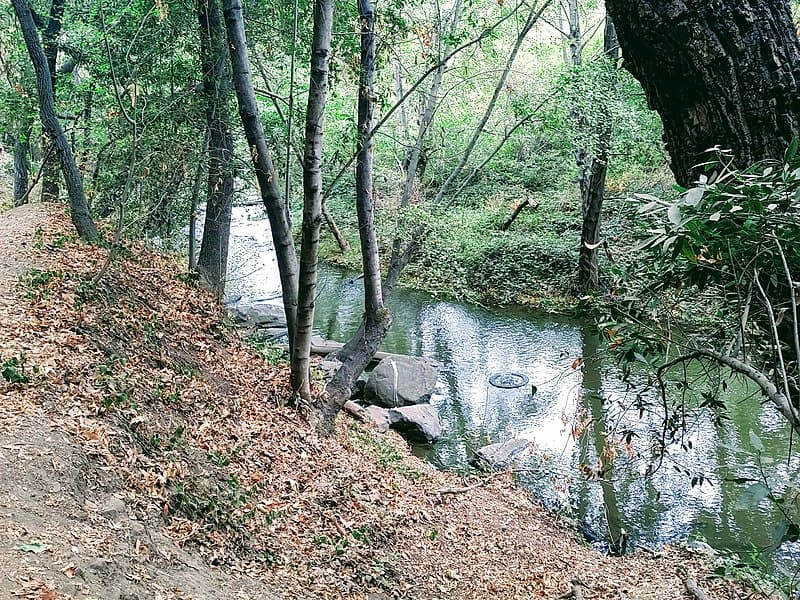 Los Gatos Creek Trail - Free Things to Do in San Jose, California