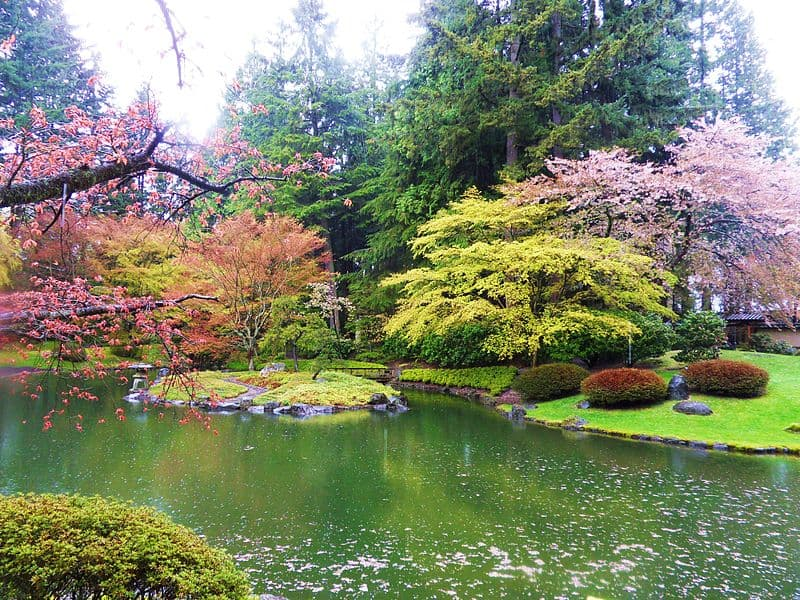 Nitobe Memorial Garden- Best Things to Do in Vancouver (BC, Canada)