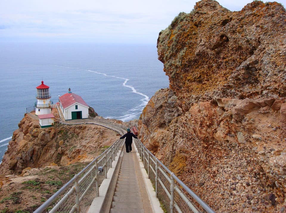 Point Reyes National Seashore - Best Day Trips from San Francisco