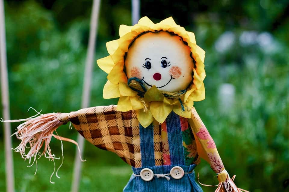 Scarecrow - Safe and Fun Fall Activities and Things to Do This Fall