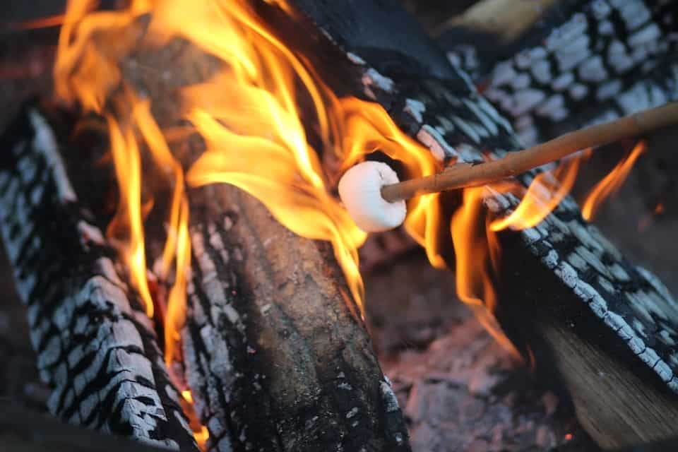 S'mores Over a Campfire - Best Things to Do with Kids Near Me