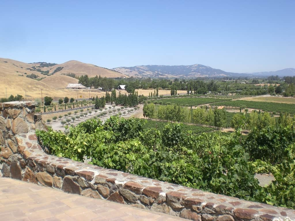 Sonoma Valley - Best Day Trips from San Francisco